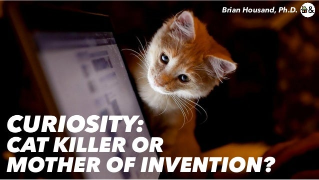 CURIOSITY: CAT KILLER OR MOTHER OF INVENTION? Brian Housand, Ph.D.