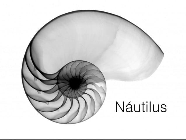 O curioso caso de Náutilus Button