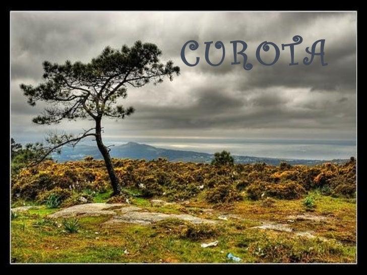 CUROTA