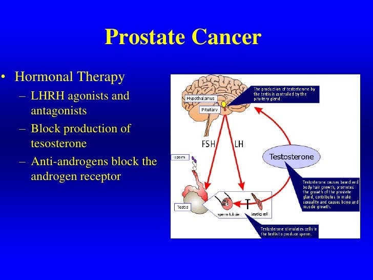 Bicalutamide Side Effects Prostate