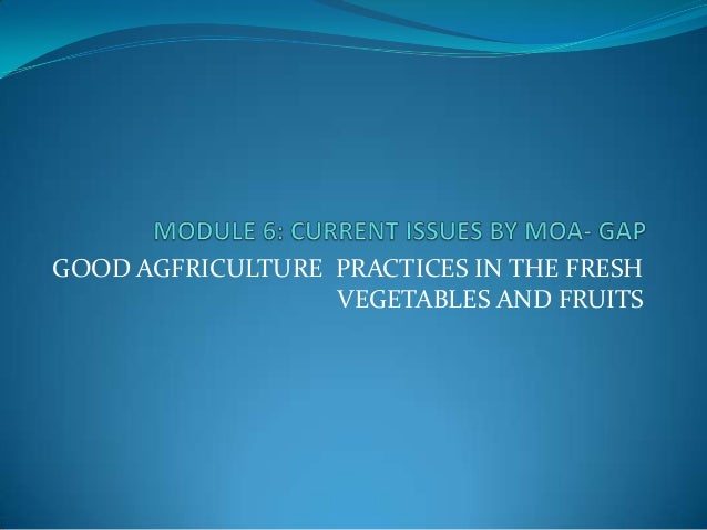 GOOD AGFRICULTURE PRACTICES IN THE FRESH VEGETABLES AND FRUITS
