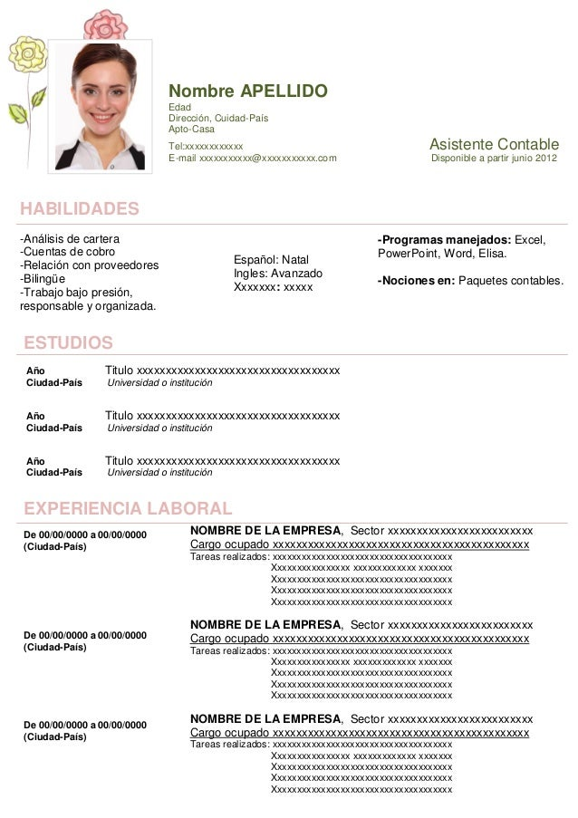 Curriculum Ejemplos Fotos De Curriculum Vitae Simple With