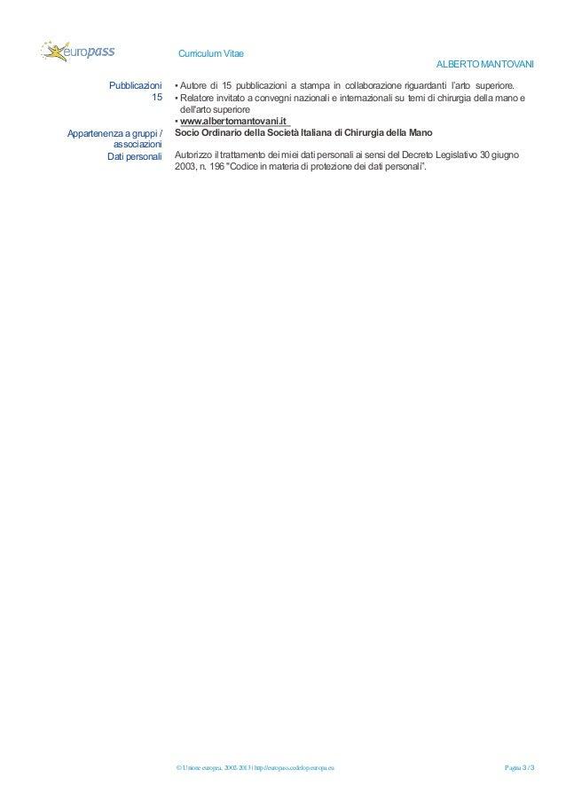 curriculum 2019 europass