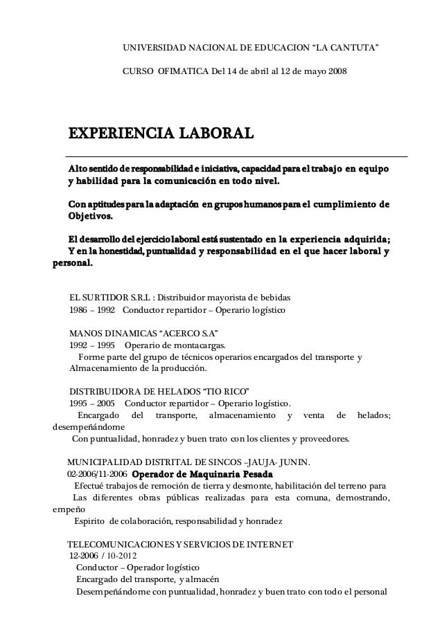 Curriculum Vitae Carlos Ichpas 1 1