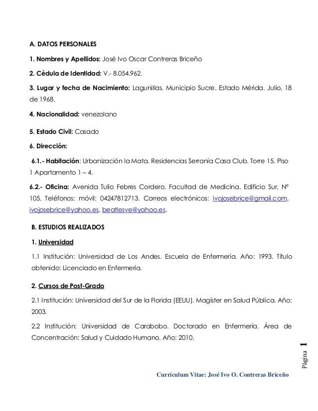 Curriculum Resumen. resumen curricular. the 25 best exemplos de ...