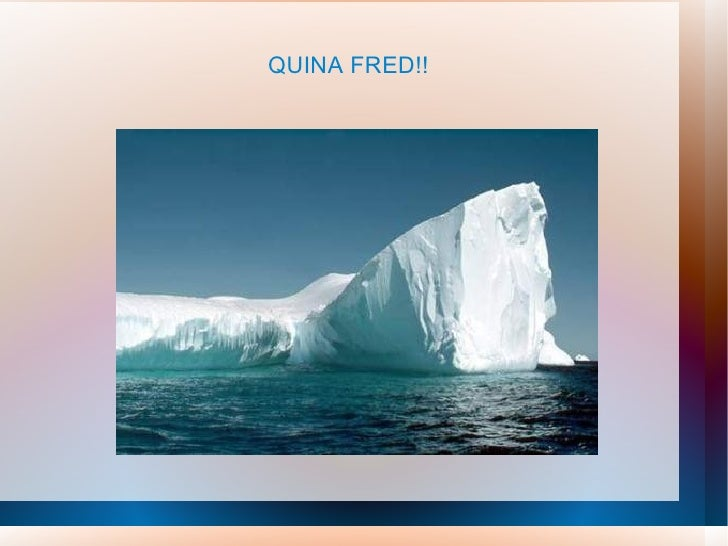 QUINA FRED!!