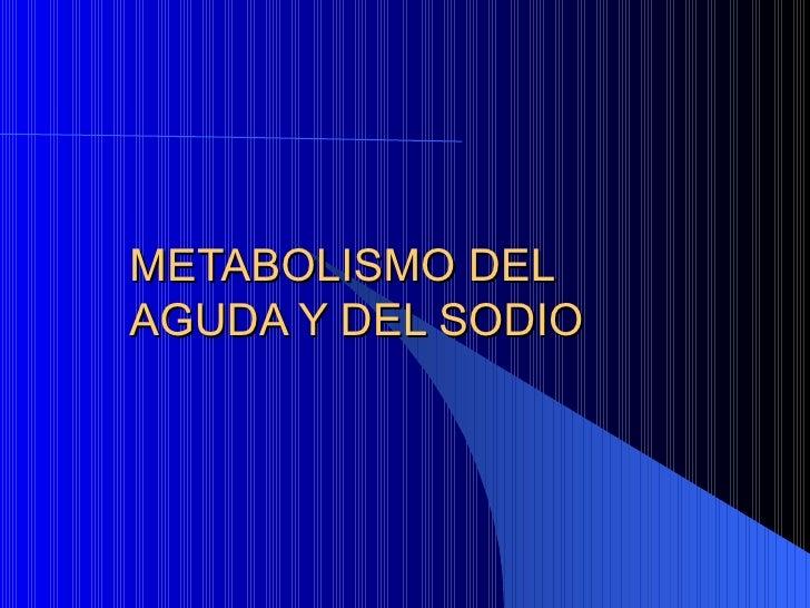 METABOLISMO DEL AGUDA Y DEL SODIO