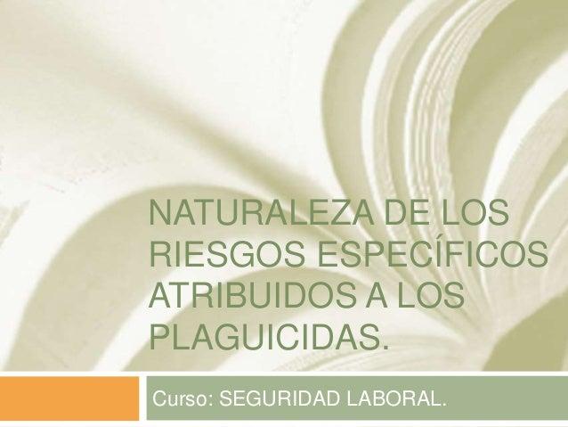 NATURALEZA DE LOS RIESGOS ESPECÍFICOS ATRIBUIDOS A LOS PLAGUICIDAS. Curso: SEGURIDAD LABORAL.