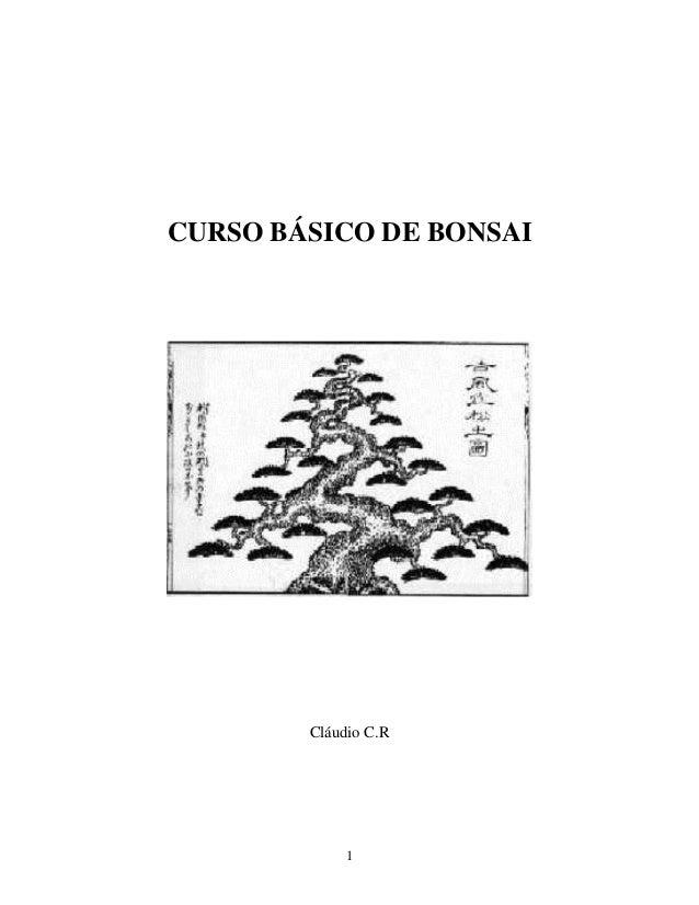 1 CURSO BÁSICO DE BONSAI Cláudio C.R