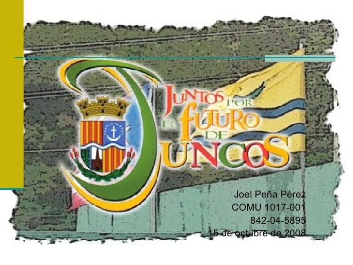 Joel Peña Pérez COMU 1017-001 842-04-5895 15 de octubre de 2008