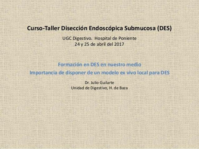 Curso-Taller Disecci�n Endosc�pica Submucosa (DES) Formaci�n en DES en nuestro medio Importancia de disponer de un modelo ...