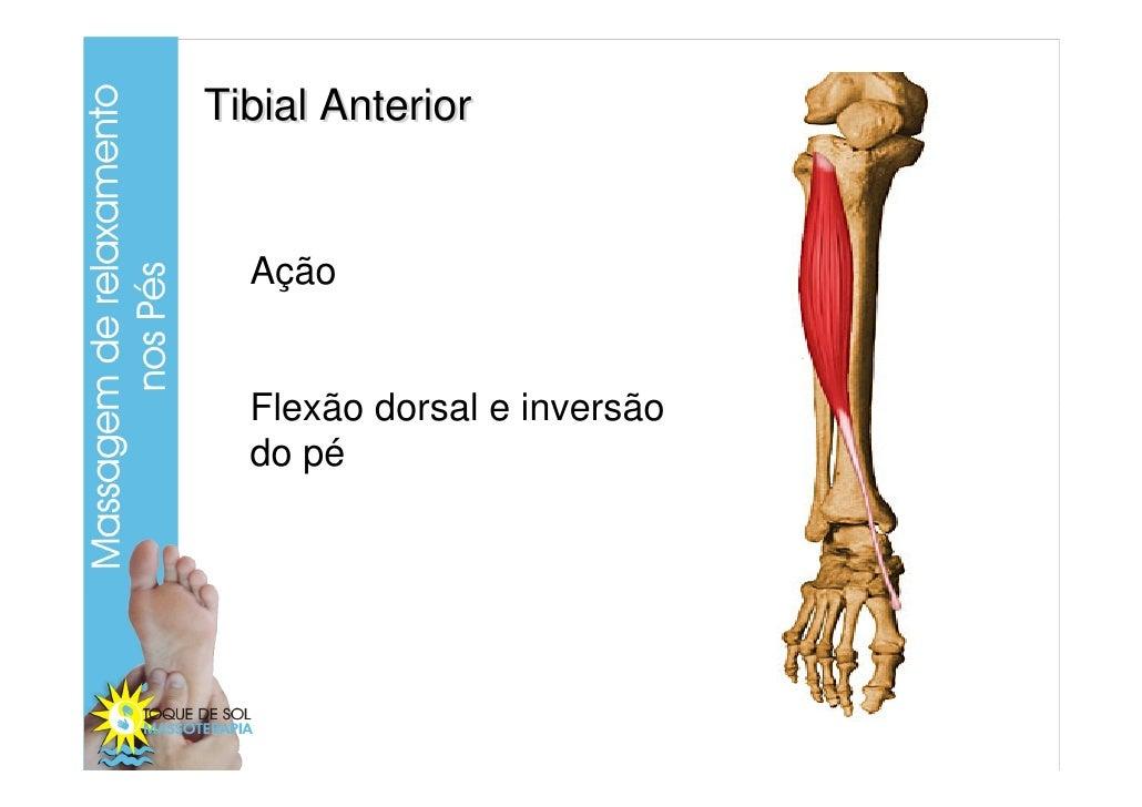 Curso anatomia membrosinferiores_pernaepe