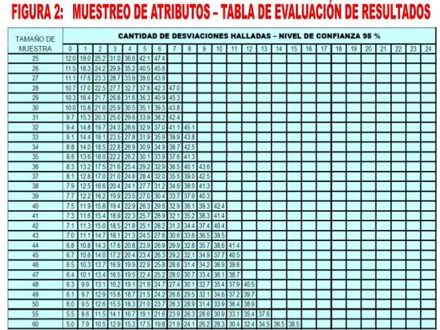 ESTA ACTIVIDAD CONSISTE EN EJECUTAR Y DOCUMENTAR LOS PROCEDIMIENTOS DEL PROGRAMA DE AUDITORÍA Y SUS RESULTADOS. APLICACIÓN...