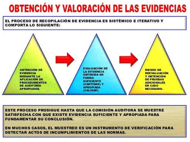 CON LA APLICACIÓN DE LOS PROCEDIMIENTOS CONTENIDOS EN EL PROGRAMA DE AUDITORÍA A LA MATERIA AUDITADA, LA COMISIÓN AUDITORA...