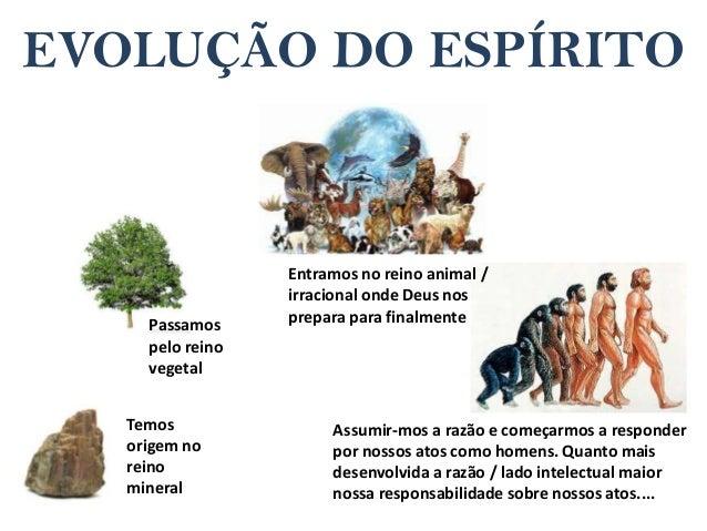 Resultado de imagem para Diz-se que o Espírito viveu nos minerais, vegetais e animais.
