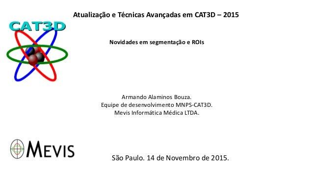 Atualização e Técnicas Avançadas em CAT3D – 2015 Novidades em segmentação e ROIs Armando Alaminos Bouza. Equipe de desenvo...