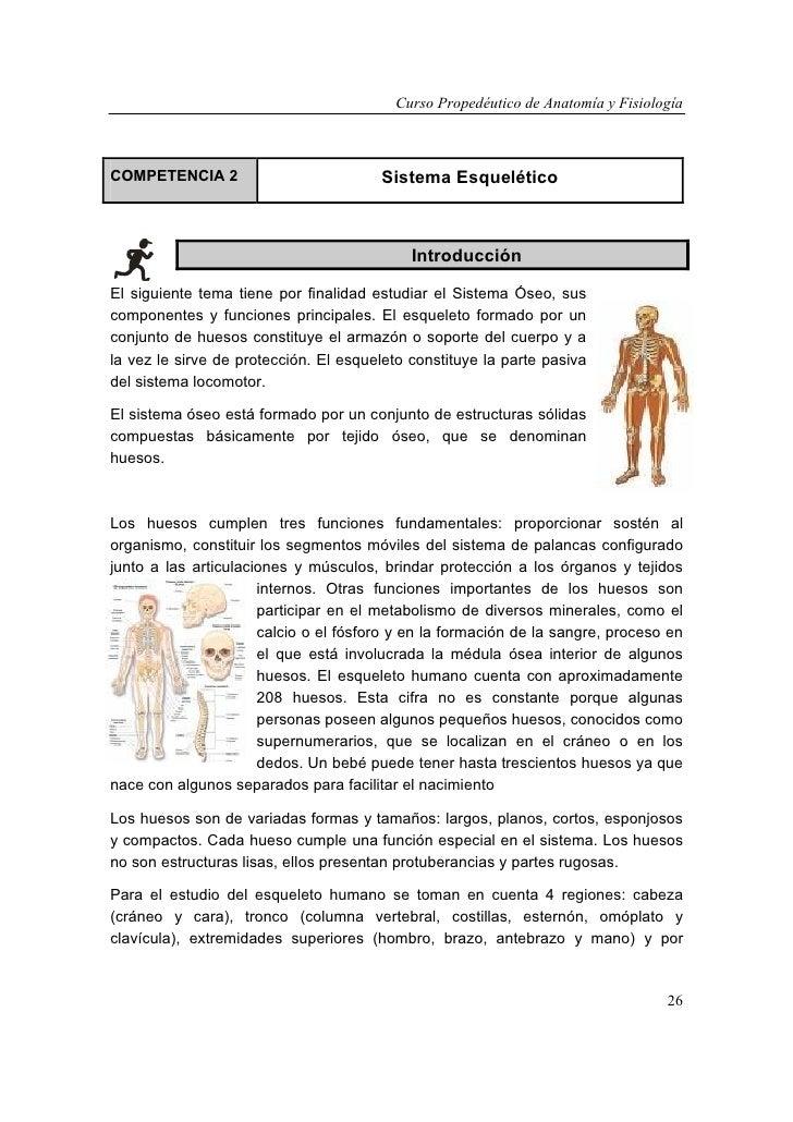 Curso de anatomía y fisiología