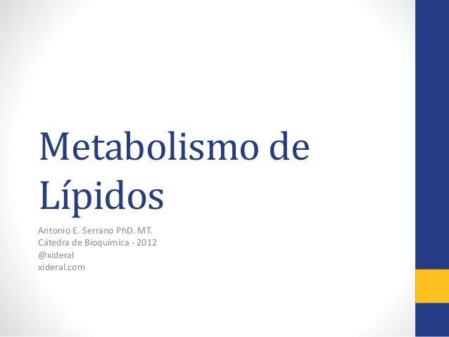 Metabolismo de Lípidos Antonio E. Serrano PhD. MT. Cátedra de Bioquímica - 2012 @xideral xideral.com