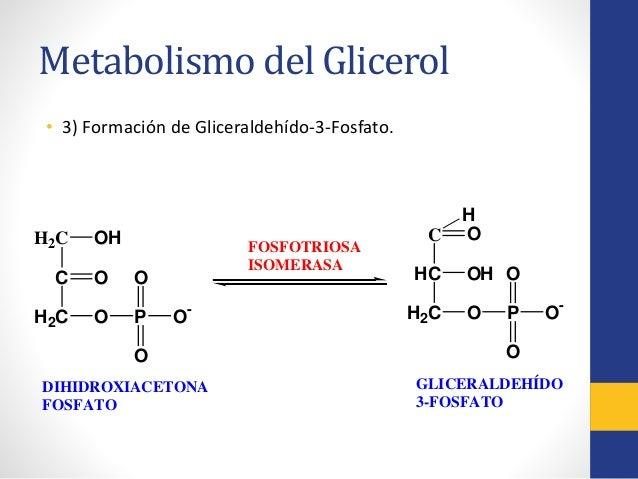 la dieta del metabolismo acelerado pdf - Información general Un