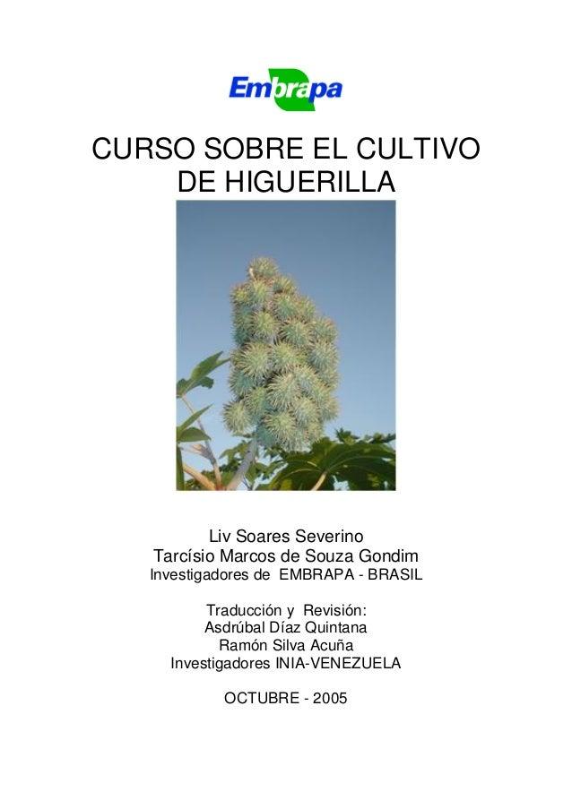 CURSO SOBRE EL CULTIVO    DE HIGUERILLA          Liv Soares Severino   Tarcísio Marcos de Souza Gondim   Investigadores de...