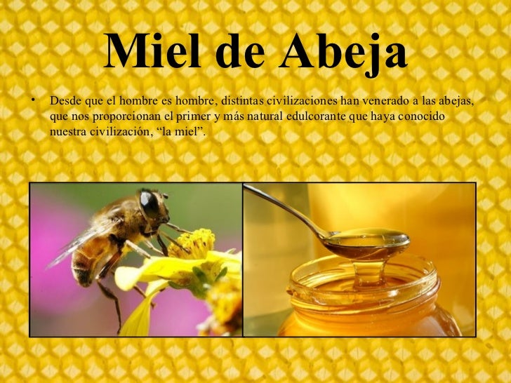 macaguifama miel