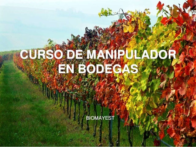 CURSO DE MANIPULADOR EN BODEGAS BIOMAYEST
