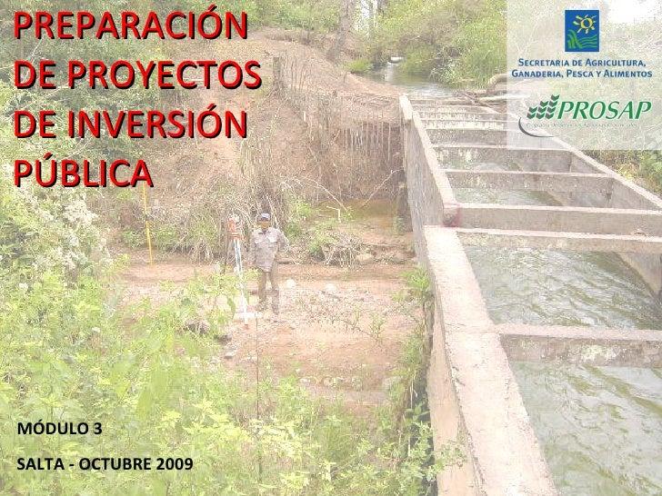 PREPARACIÓN DE PROYECTOS DE INVERSIÓN PÚBLICA MÓDULO 3 SALTA - OCTUBRE 2009