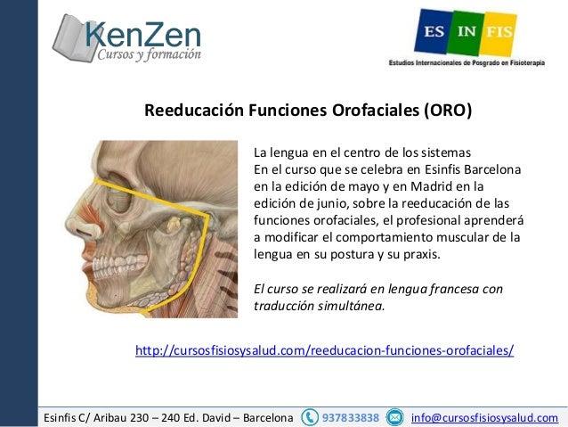 Esinfis C/ Aribau 230 – 240 Ed. David – Barcelona 937833838 info@cursosfisiosysalud.com La lengua en el centro de los sist...