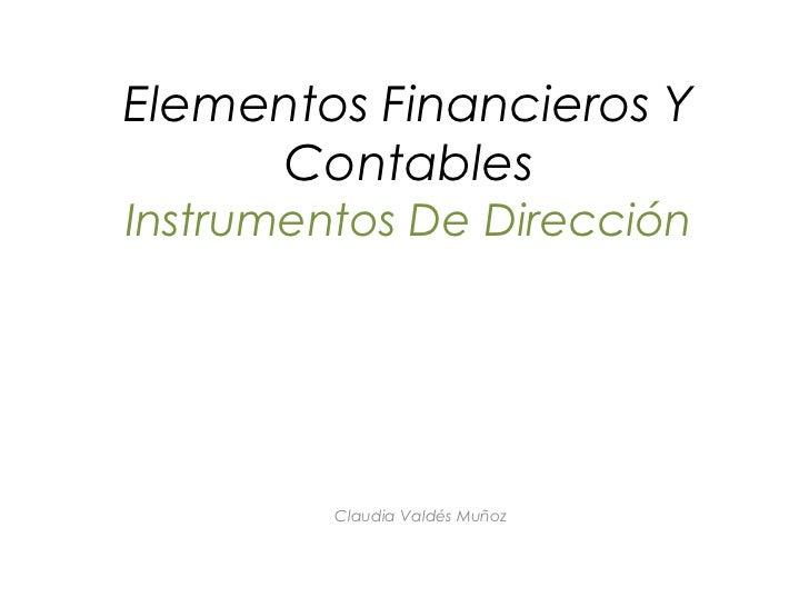 Elementos Financieros Y     ContablesInstrumentos De Dirección         Claudia Valdés Muñoz
