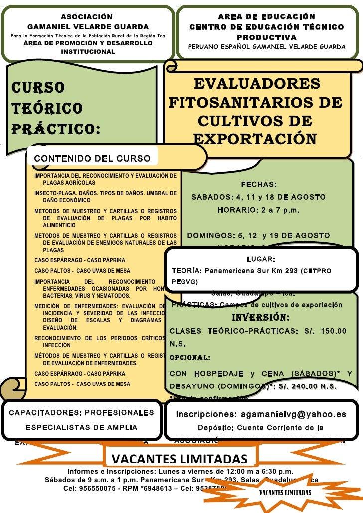 ASOCIACIÓN                                                       AREA DE EDUCACIÓN      GAMANIEL VELARDE GUARDA           ...
