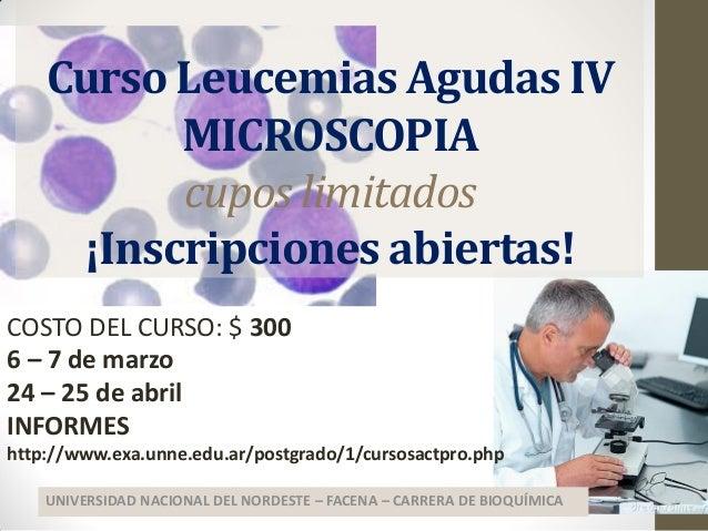 Curso Leucemias Agudas IV MICROSCOPIA cupos limitados ¡Inscripciones abiertas! UNIVERSIDAD NACIONAL DEL NORDESTE – FACENA ...