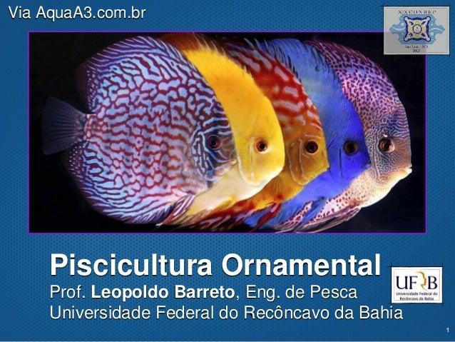 Texto Piscicultura Ornamental Prof. Leopoldo Barreto, Eng. de Pesca Universidade Federal do Recôncavo da Bahia Via AquaA3....