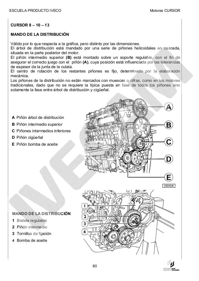 ford focus wiring diagram schemes