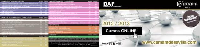 Cursos Online 2013