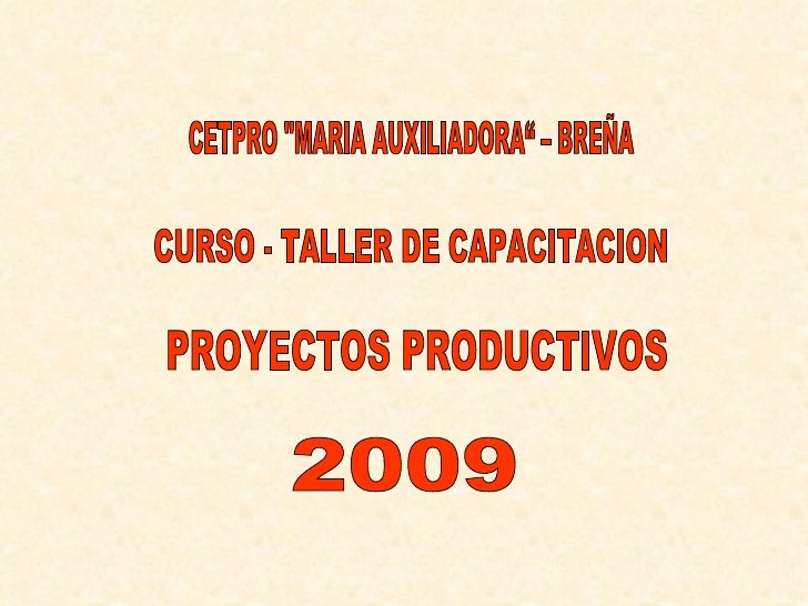 "CURSO - TALLER DE CAPACITACION PROYECTOS PRODUCTIVOS CETPRO ""MARIA AUXILIADORA"" – BREÑA 2009"