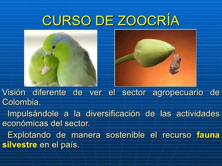 CURSO DE ZOOCRÍA Visión diferente de ver el sector agropecuario de Colombia. Impulsándole a la diversificación de las acti...