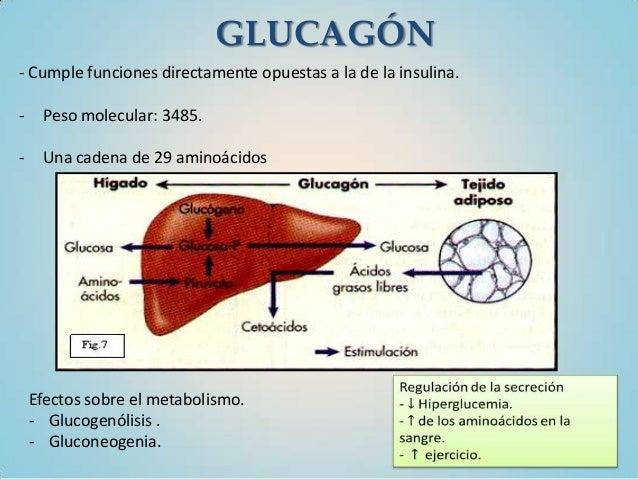 Curva de tolerancia a la glucosa