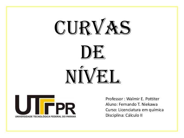 Curvas de nível Professor : Walmir E. Pottiter Aluno: Fernando T. Niekawa Curso: Licenciatura em química Disciplina: Cálcu...