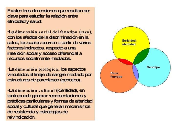 <ul><li>Existen tres dimensiones que resultan ser clave para estudiar la relación entre etnicidad y salud:  </li></ul><ul>...