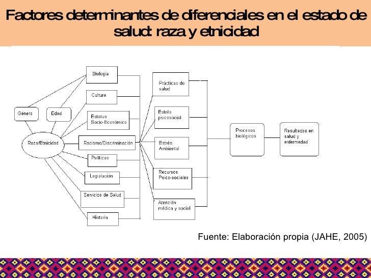 Factores determinantes de diferenciales en el estado de salud: raza y etnicidad Fuente: Elaboración propia (JAHE, 2005)