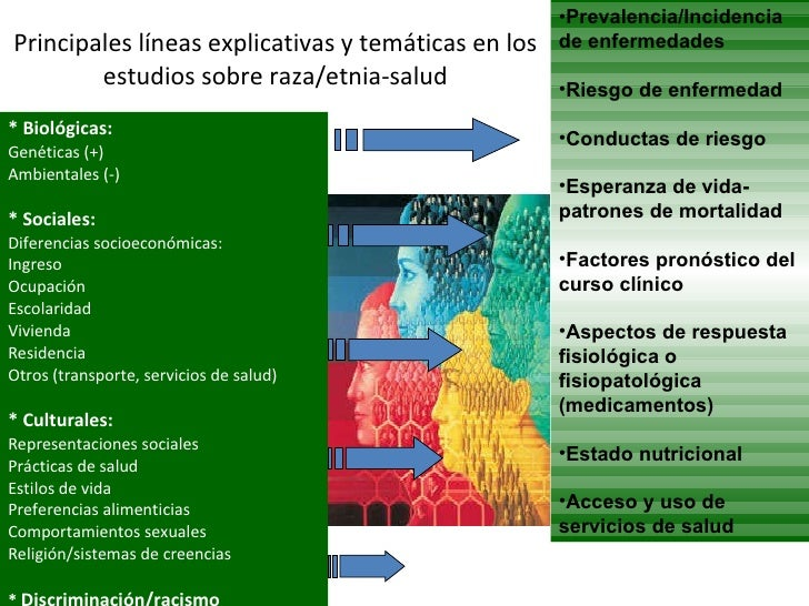 Principales líneas explicativas y temáticas en los estudios sobre raza/etnia-salud <ul><li>* Biológicas:  </li></ul><ul><l...
