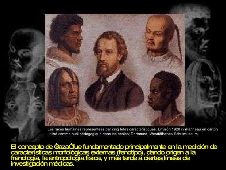 """<ul><li>El concepto de """"raza"""" fue fundamentado principalmente en la medición de características morfológicas externas (fen..."""