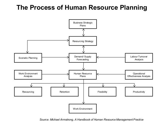 Human Resource Plan Template - Plan