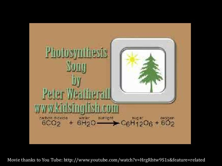 photosynthesis presentation Photosynthesis how plants make food from sunlight and low energy molecules photoautotrophs carbon and energy sources photoautotrophs carbon source is carbon dioxide.