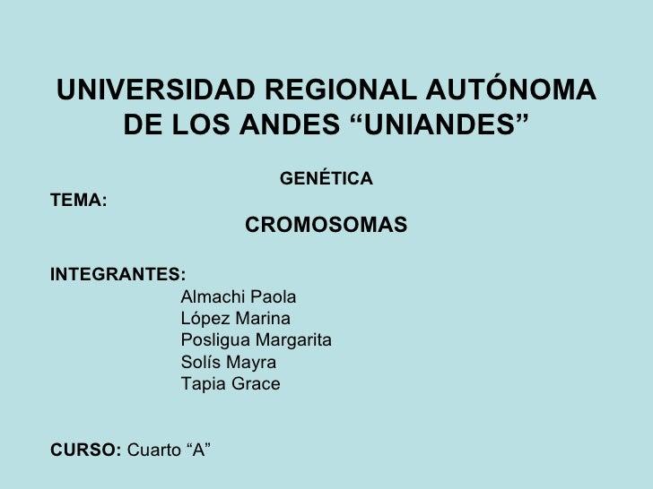 """UNIVERSIDAD REGIONAL AUTÓNOMA DE LOS ANDES """"UNIANDES"""" GENÉTICA TEMA:  CROMOSOMAS INTEGRANTES:   Almachi Paola López Marina..."""