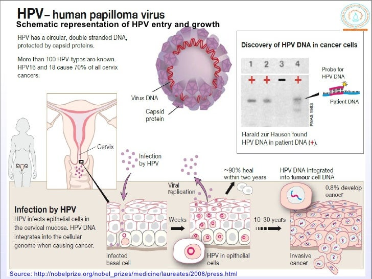 Virus and Cancer