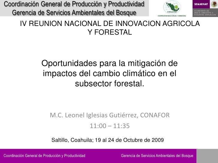 Coordinación General de Producción y Productividad   Gerencia de Servicios Ambientales del Bosque           IV REUNION NAC...