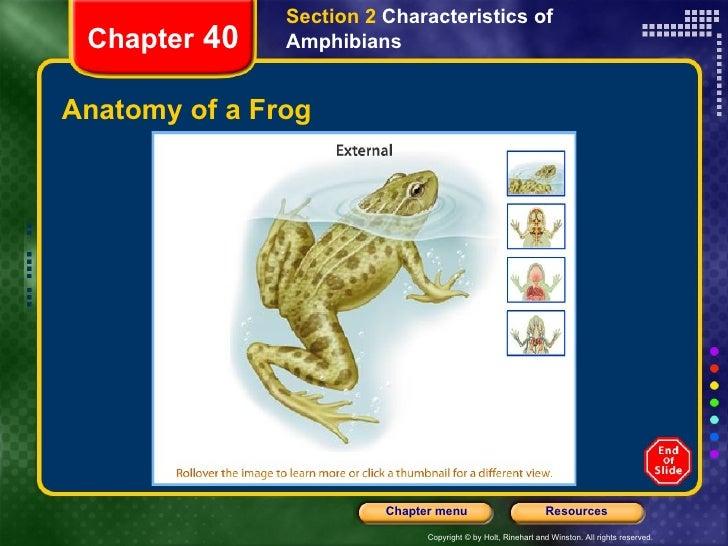 Biology - Amphibians