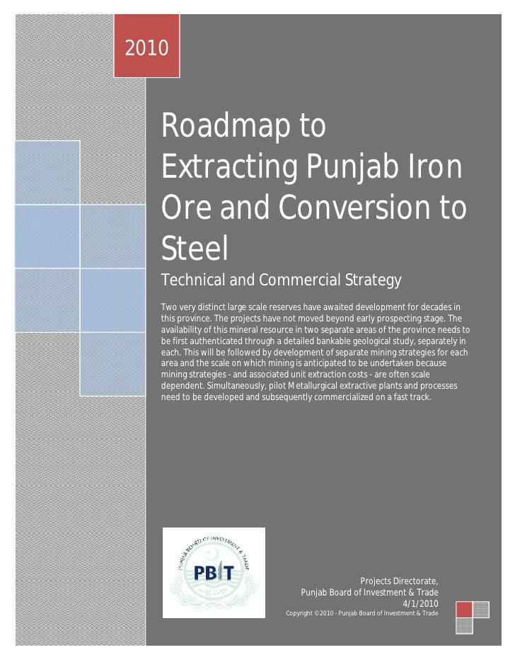 2010      Roadmap to    Extracting Punjab Iron    Ore and Conversion to    Steel    Technical and Commercial Strategy    T...