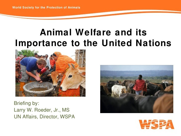 Animal Welfare and its Importance to the United Nations Briefing by: Larry W. Roeder, Jr., MS UN Affairs, Director, WSPA